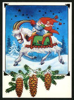 kerstgeit en kabouters