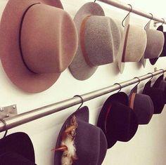 Des chapeaux de feutre rangés