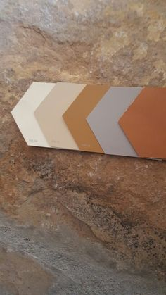 Rustic color palette with Sherwin William color palette (L toR) Muslin SW 6133 Bittersweet Stem SW 7536 Smokey Topaz SW 6177 Pewter Tankard SW 0023 Brandywine RR10