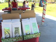Green Kid Crafts Party Favors!