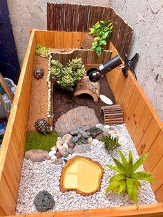 Tortoise Terrarium, Turtle Terrarium, Tortoise Cage, Tortoise House, Tortoise Habitat, Turtle Habitat, Baby Tortoise, Reptile Habitat, Sulcata Tortoise
