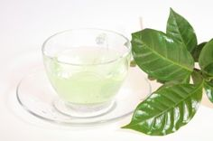 Does green tea burn belly fat yahoo image 9
