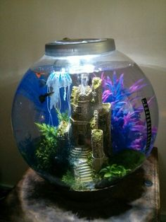 Pin by SHELLEY S on AQUARIUMS | Pinterest | Fish tanks Aquariums and Fish & Pin by SHELLEY S on AQUARIUMS | Pinterest | Fish tanks Aquariums ...