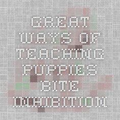 great ways of teaching puppies bite inhibition