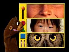 Partes del cuerpo - Video para niños de 12 a 18 meses - YouTube