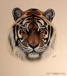 #tigers, #animals, #images, #тигры, #животные, #картинки https://avavatar.ru/image/4543