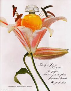 1991 perfume ad for Quelques Fleurs perfume