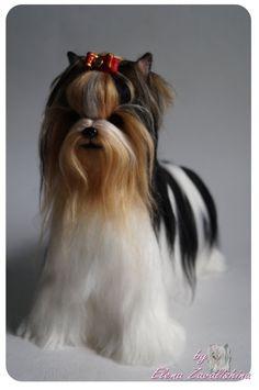 Needle felted Dog / Yorkie/ Beiwer Yorkshire by Felteddoggie