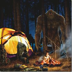 """""""You are not welcome here"""" I am trying to reach this witness as there is a part two to his encounter. I will go ahead and post part one. A listener writes """"I was not a Bigfoot enthusiast by nature. As any other person who has shared an experience likewise can tell you, that all changes the moment you are faced with one."""