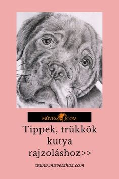 Állat rajzok - Tippek, trükkök kutya rajzoláshoz! Katt a profilba>> Einstein, Clever, Tools, Art, Art Background, Instruments, Kunst, Performing Arts, Art Education Resources