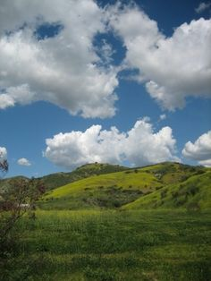 Limestone Canyon in the spring, as seen on an Irvine Ranch Conservancy hike.