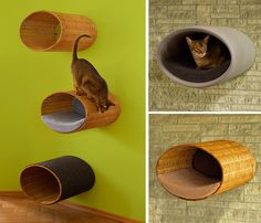 Could easily make this myself! Great idea, all we need to make is a kittle stair case on the wall