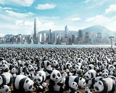 1,600 papier-mache pandas to pop-up at hong kong landmarks