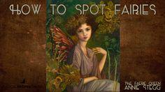 Magical Recipies Online | How to spot Fairies:12 signs when Fairies are near you
