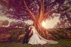 Biltmore Wedding, Coral Gables Florida, Miami