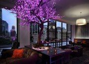 Cuvee Lounge Bar at 5 star hotel: Sofitel Brisbane Central Hotel. This hotel's address is: 249 Turbot Street Brisbane City Center Brisbane 4000 and have 433 rooms Style At Home, Lounge, Light Up Tree, Purple Trees, Purple Flowers, Tree Lighting, Lighting Ideas, Home And Deco, Interior Exterior
