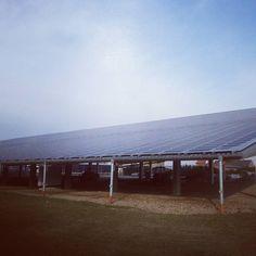 www.photovoltaik.one #sonne #solar #solaris #photovoltaik #photovoltaic #energie #erneuerbareenergie #sun #sunenergy #photovoltaikspeicher #energy #solecollector #solarmodule #nicesolargenerator #schön #schönephotovoltaikanlage #solaristzukunft #green #blue #blau