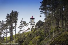 Heceta Head Lighthouse and Downtown Florence, Oregon Florence Oregon, Cannon Beach, Lighthouse, Photography, Bell Rock Lighthouse, Light House, Photograph, Fotografie, Lighthouses