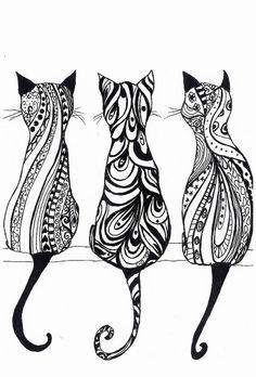 gatos monocromaticos
