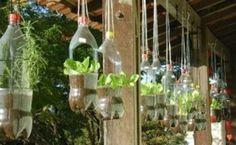 jardin-vertical-con-botellas-plasticas-300x185