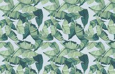 blue-green-tropical-leaf-design-plain