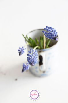 Earth laugs in flowers, blue, white, vintage, Syl loves