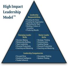 Know your role! High impact leadership model