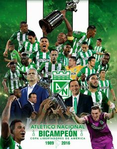 Campeón Libertadores 2016 Club, Baseball Cards, Movies, Movie Posters, Brazil, Tattoo, Champs, Sports, Mexicans