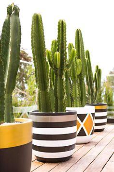 Fibreclay Pots By Australian-Based Design Twins. Flower Pot Art, Flower Pot Design, Flower Pot Crafts, Painted Plant Pots, Painted Flower Pots, Concrete Planters, Diy Planters, Concrete Crafts, House Plants Decor
