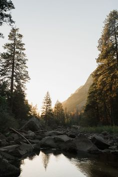 Fall in Yosemite National Park travel guide / See & Savour