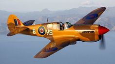 Airplanes warbird curtiss p-40 (1920x1080, warbird, curtiss)  via www.allwallpaper.in