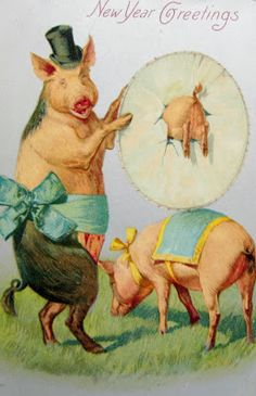 postcardiva postcard blog: NEW YEAR Pig POSTCARDS