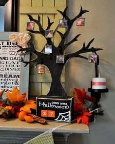 Halloween Picture Tree: Take a photo every year of your children dressed up - and each year add the photo to the tree. Fun way to display your kids cute costumes from the past. And fun for your kids to see how they've changed from yr to yr.