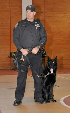 Officer Stone & K9 Murdock of the NYPD