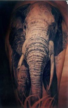 Elephant+Tattoo+Design