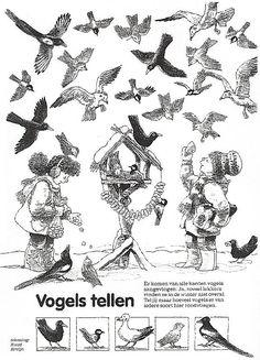 in the sky, Vogel Clipart, Feeding Birds In Winter, Winter Thema, Birds In The Sky, Winter Project, Nature Table, Forest School, Winter Kids, Nouvel An
