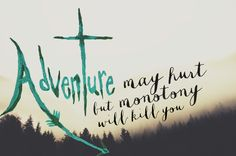 adventure may hurt but monotony will kill you | Gorgeous inspirational travel quotes by @Seattle's Travels