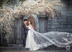 New York Wedding Photographer Pre Wedding Photoshoot, Bridal Shoot, Wedding Poses, Wedding Shoot, Wedding Bride, Wedding Venues, Korean Wedding, Top Wedding Dresses, Courthouse Wedding