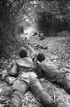 4th Infantry Division Vietnam Pleiku Province | Diggers from 4RAR during a contact in February 1969)
