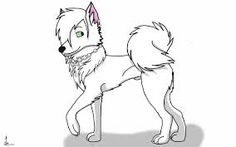 Image result for japanese spitz drawing