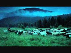 Película: Life in A Day.  Año: 2011  País: Reino Unido  Duración: 90 min.  Director: Kevin Macdonald  Género: Documental