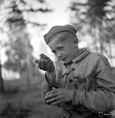 Portrait of a Finnish boy of the Savonlinna Military District's Soldier Boys at a summer training camp during the Finnish-Soviet Continuation War. Heholds a wounded bird he had found andis nursing back to health. Soldier Boys were part of the national Civil Guard of the Finnish defense and protection forces. After reaching age 17, they were then eligible to join Finnish military units. Sotilaspojat was disbanded following the end of the Continuation War in 1944. Finland. 30 June 1942.
