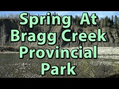 I explore Bragg Creek Provincial Park in a solo trip out to the area. I walk around and notice the lingering effects of the 2013 flood in the region. Bragg Creek, Solo Trip, Solo Travel, Day Trip, Rocky Mountains, Journey, Explore, Park, Spring