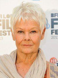 The 76 best Judi Dench hair images on Pinterest | Short gray hair ...