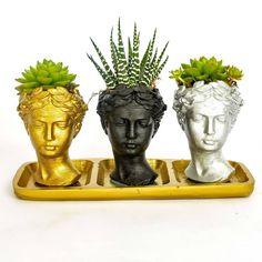 Trio Helen Tillendsia ve Kalanchoe Özel Saksı Seti Buddha, Planter Pots, Statue, Mini, Decor, Art, Art Background, Decorating, Kunst