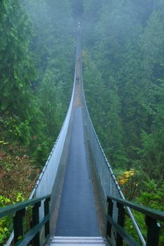 Capilano suspension Bridge Vancouver Canada. I walked this bridge... 1/4 mile long... 300 feet in the air over a gorge and river!