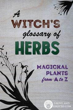 A Witch's glossary of herbs A handy key to the herbs of witchcraft. Each of the herbs listed has its own character and magickal properties. They are revealed to the Witch through study, me