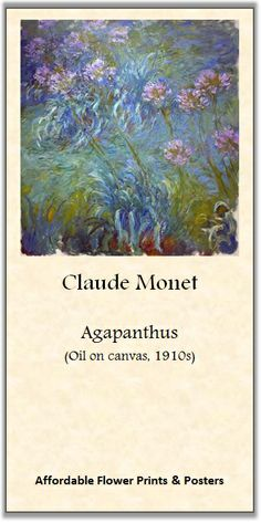 Claude Monet, Agapanthus | Roni's online flower-prints gallery