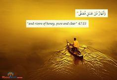 Rivers of honey.