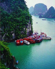 Enter another world at Halong Bay in #Vietnam. Tag who you want to share this magical experience with!